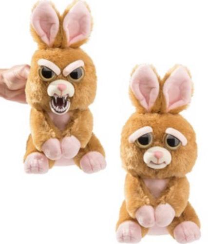 Fiesty Rabbit