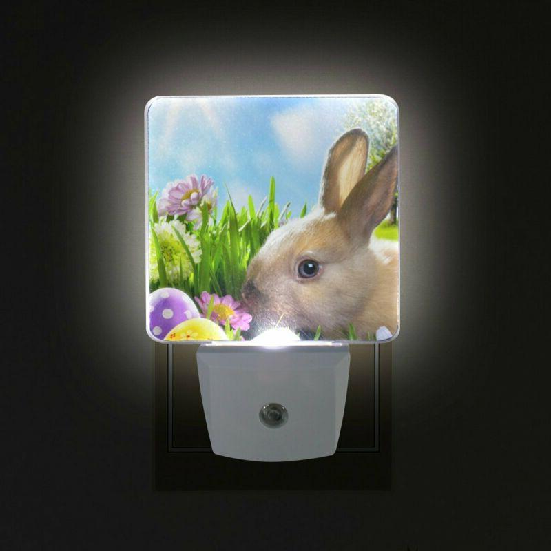 ALAZA With Dawn Sensor,Art And Eggs
