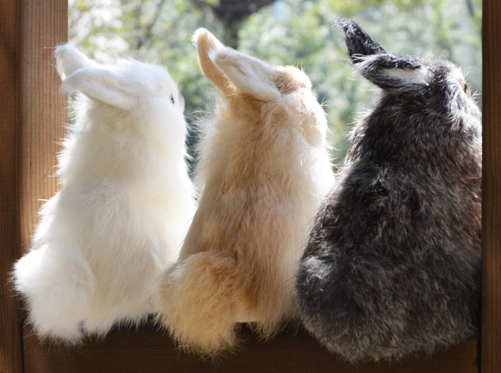 Lifelike Realistic Rabbit Home Decoration