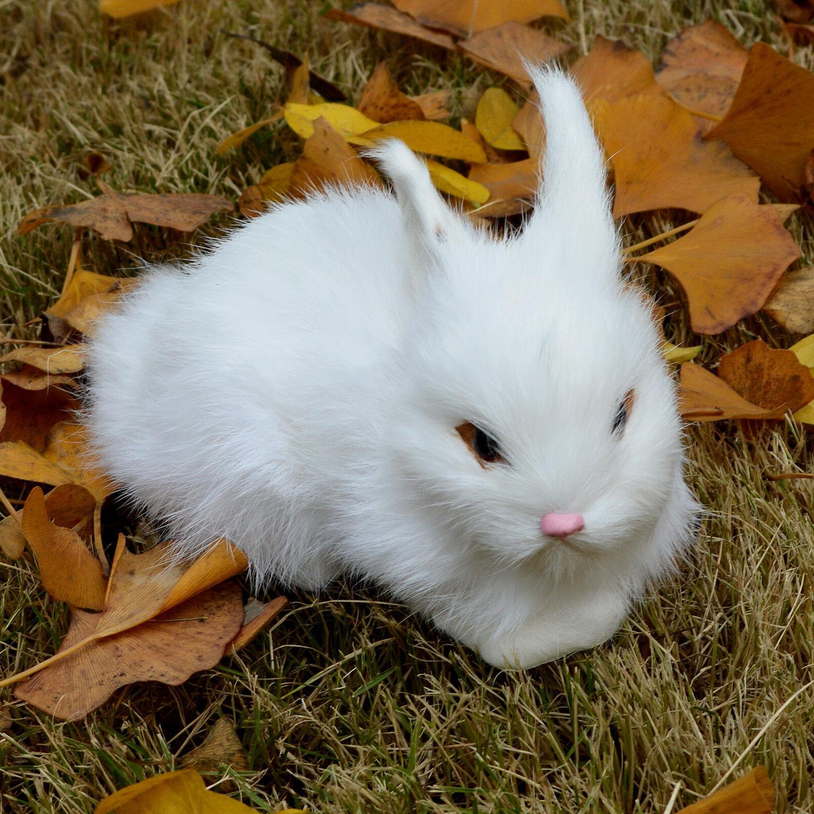 Mini White Animal Easter