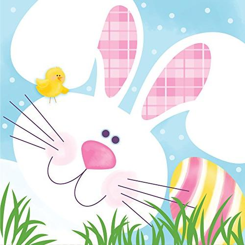Creative Converting Paper Beverage Napkins, Cottontail Fun,
