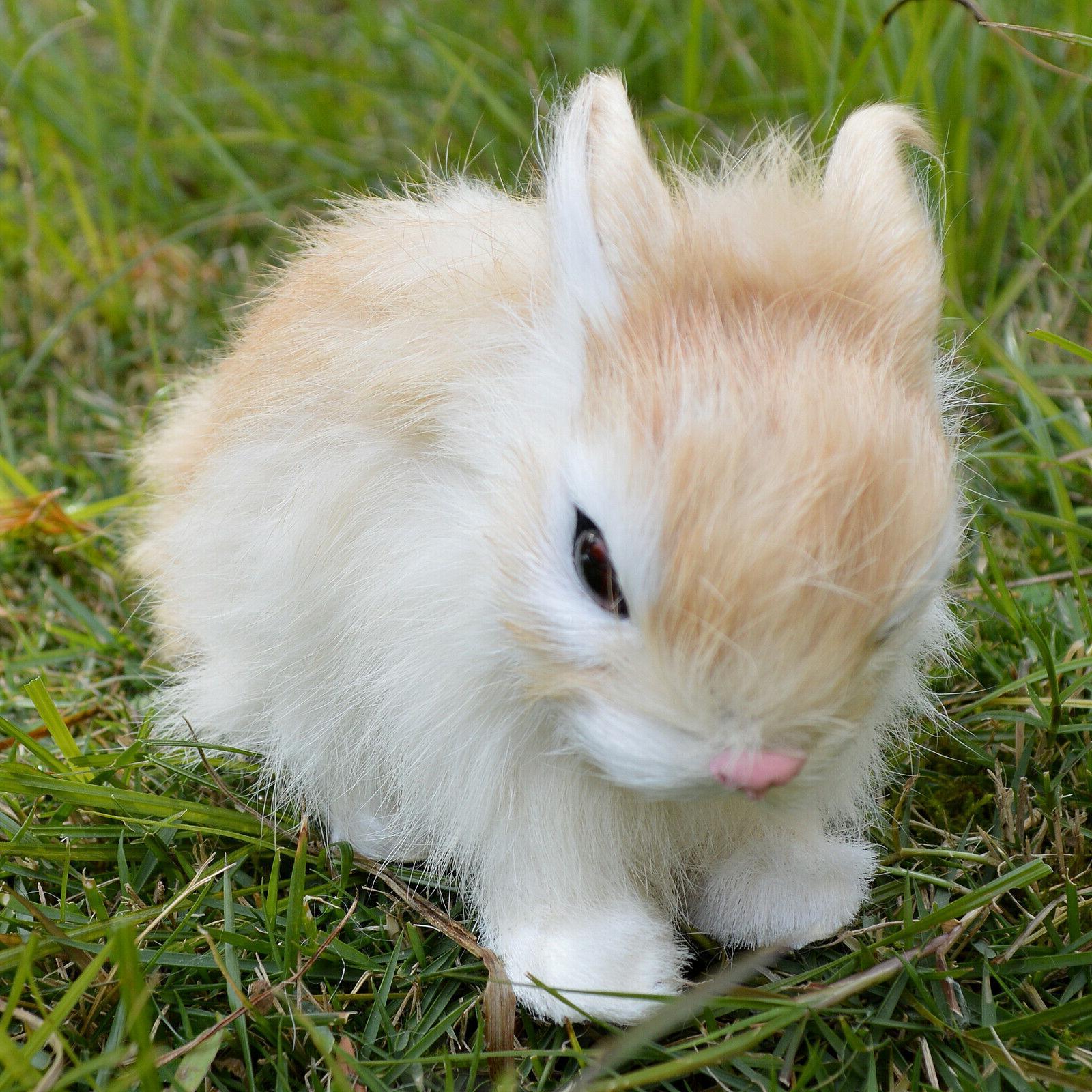 Realistic Bunny Animal Holiday