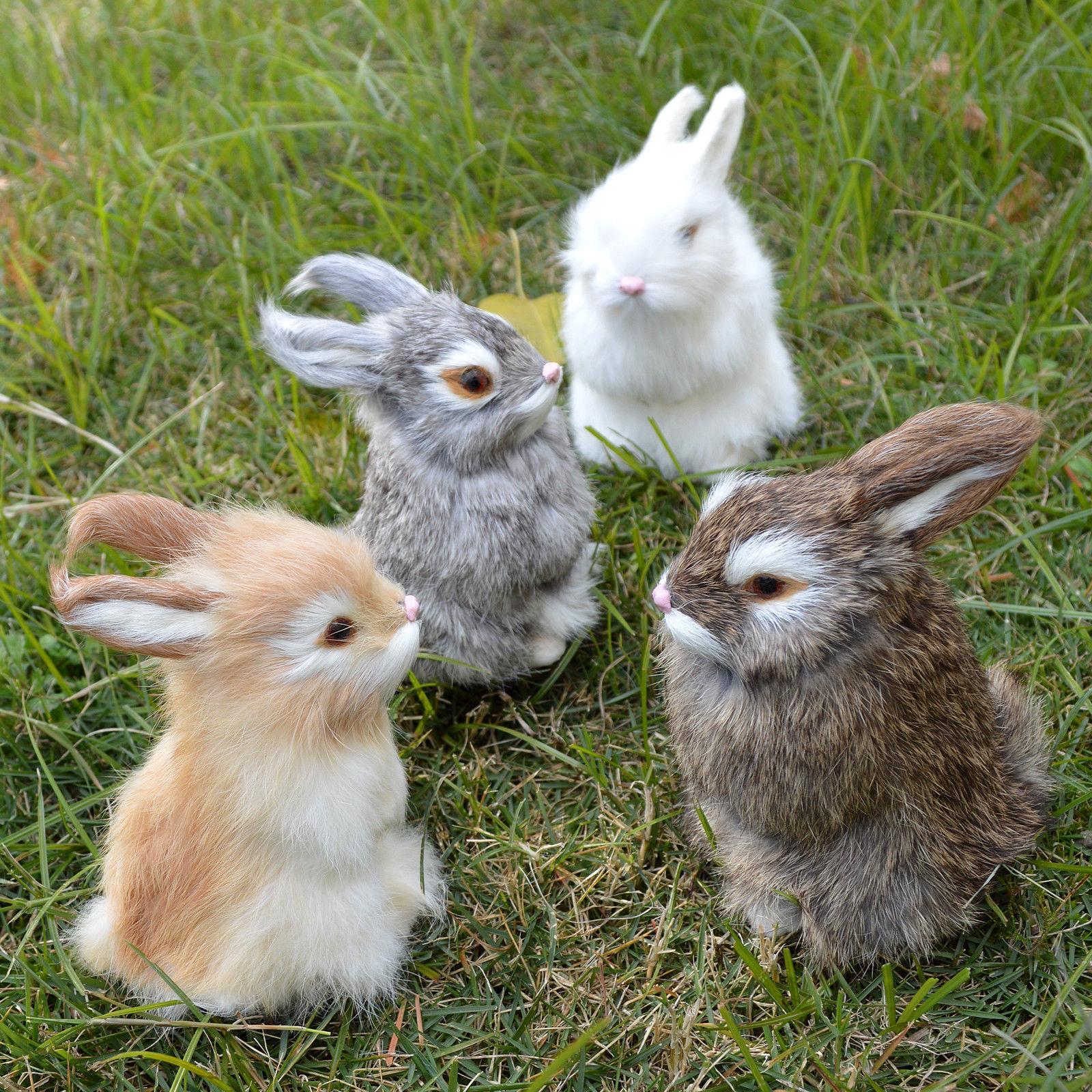 Realistic Bunny Spring