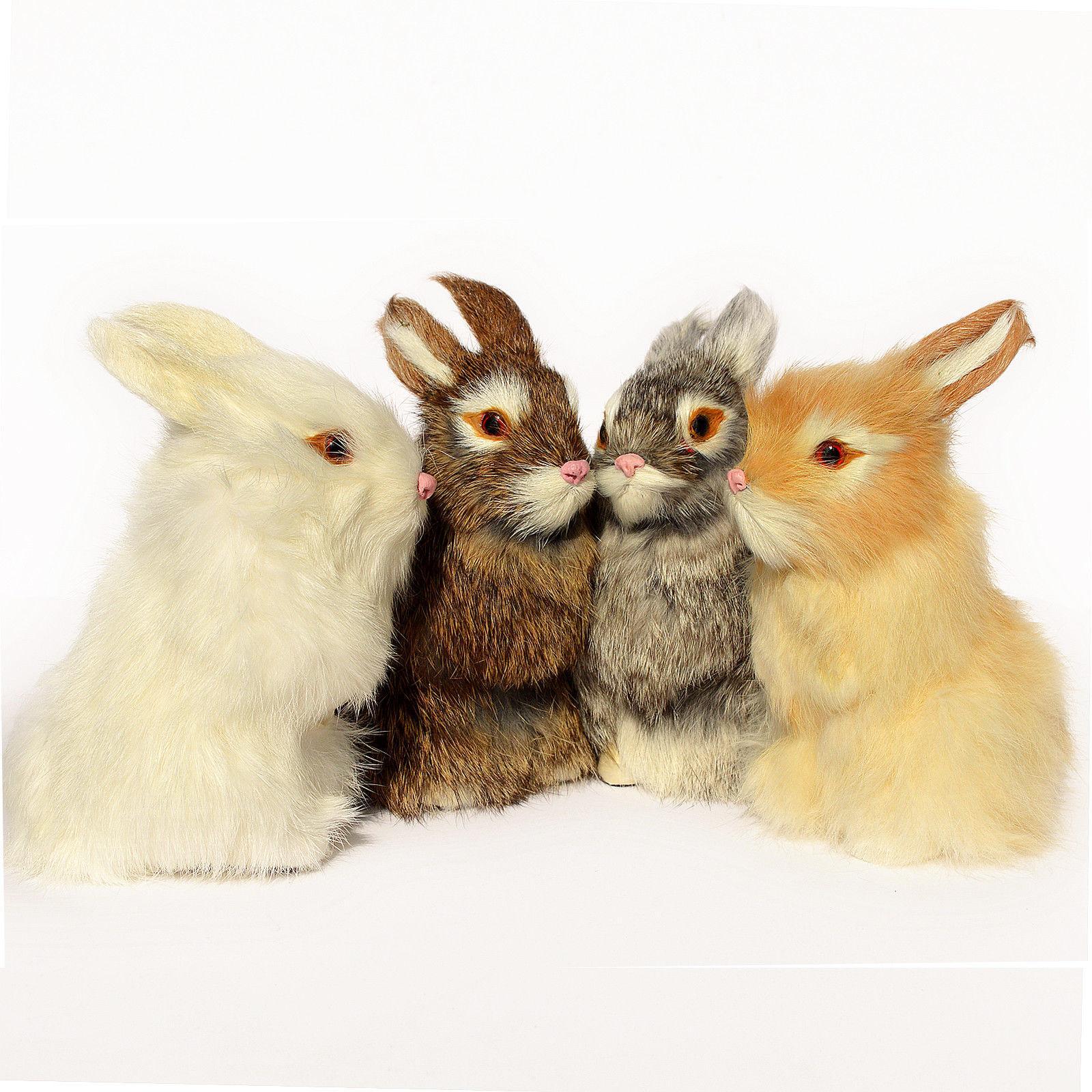 Realistic Bunny Animal