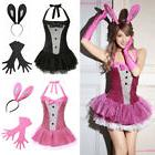 Women's Backless Bunny Rabbit Suit Lingerie Costume Fancy Dr